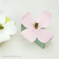 カオリノアート/ハナミズキ